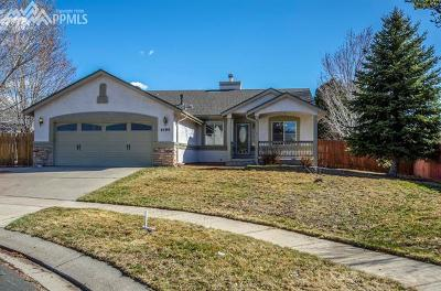 Colorado Springs Single Family Home For Sale: 4190 Coolwater Drive