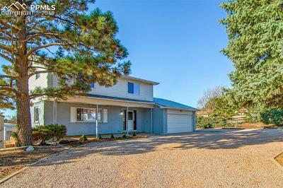 El Paso County Single Family Home For Sale: 4919 Rocking R Drive