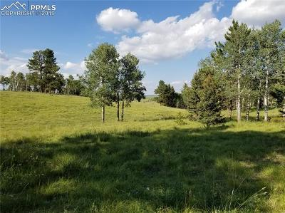 Divide Residential Lots & Land For Sale: 9615 W Highway 24 Highway