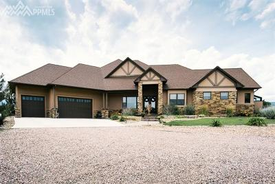 Single Family Home For Sale: 5815 Good Pasture Drive