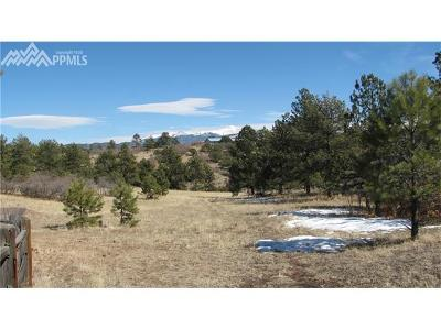 Florissant Residential Lots & Land For Sale: 1305 Apache Trail