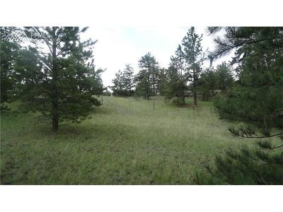 Guffey Residential Lots & Land For Sale: 145 County 85 Road