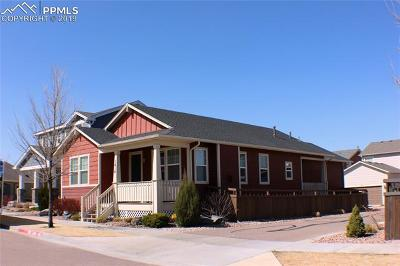 El Paso County Rental For Rent: 1614 Nellie Lane #LOWER