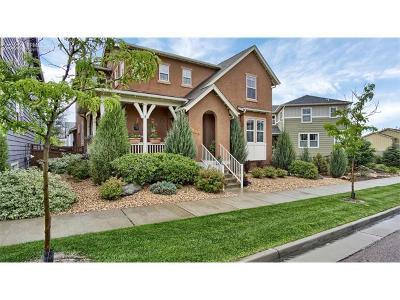 Single Family Home For Sale: 174 Millstream Terrace