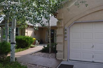 Monument Single Family Home For Sale: 460 W Lone Horn Point