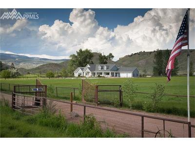 Farm For Sale: 281 Four Mile Lane