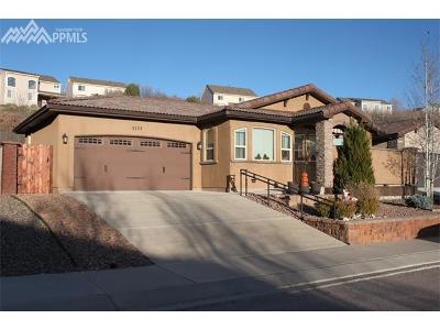 Colorado Springs Single Family Home For Sale: 5157 Vista Villas Point