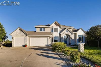 Colorado Springs Single Family Home For Sale: 4125 Pintail Lane