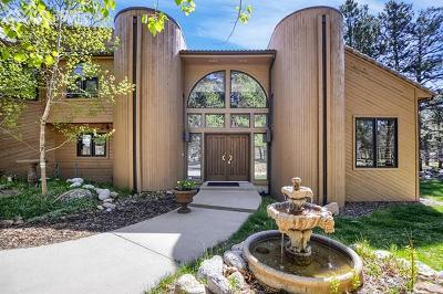 Monument Single Family Home For Sale: 18145 Sunburst Drive