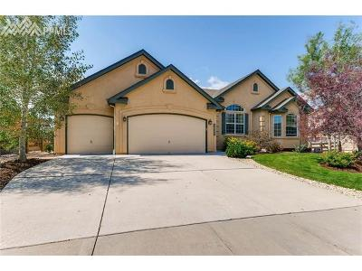 Monument Single Family Home For Sale: 16284 Gold Creek Drive