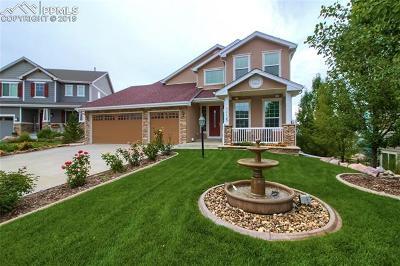 Castle Rock Single Family Home For Sale: 1123 Whitekirk Place