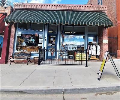 Commercial For Sale: 333 E Bennett Avenue