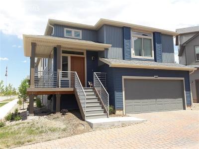 Single Family Home For Sale: 6669 John Muir Trail