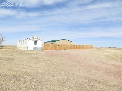 El Paso County Single Family Home For Sale: 39030 Alta Vista Road