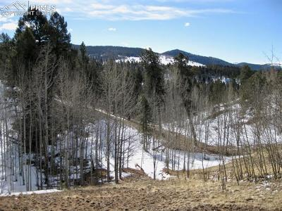 Cripple Creek Residential Lots & Land For Sale: 12 Princess Way