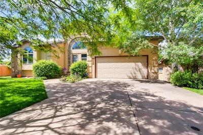 Colorado Springs Single Family Home For Sale: 2756 Stonewall Heights