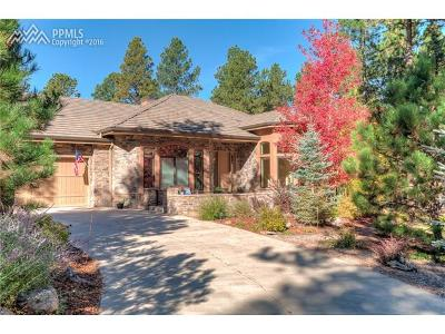 Colorado Springs Single Family Home For Sale: 16122 Timber Meadow Drive