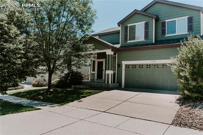 Single Family Home For Sale: 7235 Edgebrook Drive
