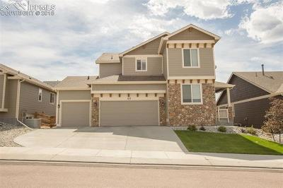 Monument Single Family Home For Sale: 827 Tailings Drive