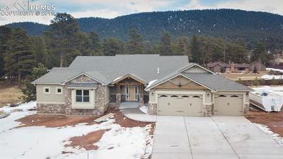 Woodland Park Single Family Home For Sale: 1225 Cottontail Trail
