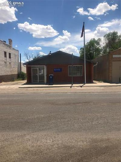 Commercial For Sale: 524 Main Street