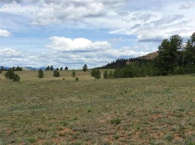 Lake George Residential Lots & Land For Sale: Highway 24