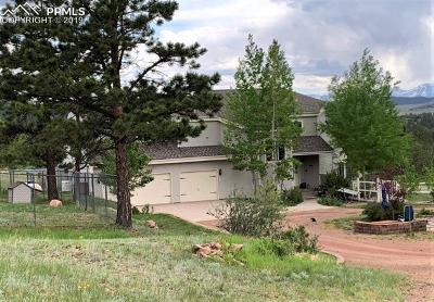 Single Family Home For Sale: 1050 Elk Trail