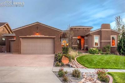 Colorado Springs Single Family Home For Sale: 4901 Rainbow Gulch Trail
