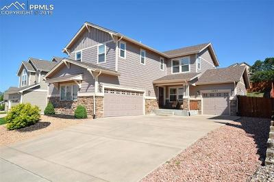 Colorado Springs Single Family Home For Sale: 7495 Chancellor Drive