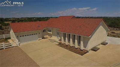 Pueblo Single Family Home For Sale