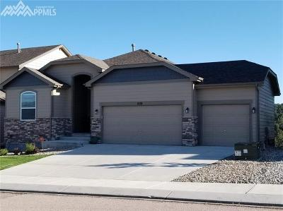 Monument Single Family Home For Sale: 828 Gold Canyon Road