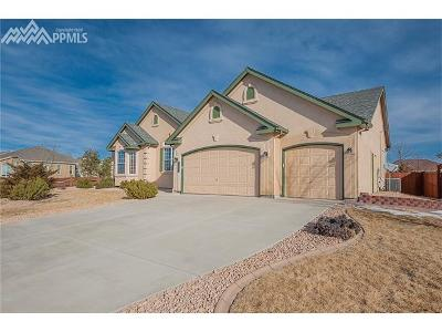 Peyton Single Family Home For Sale: 9716 Kings Canyon Drive
