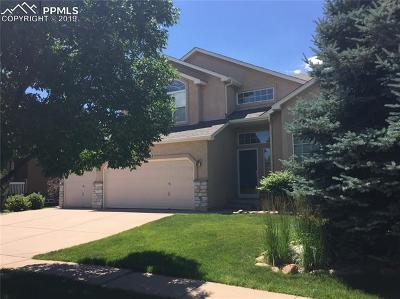 Colorado Springs Single Family Home For Sale: 9210 Chetwood Drive