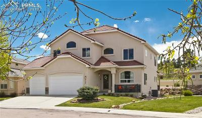 Colorado Springs Single Family Home For Sale: 4127 San Felice Point