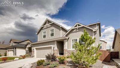 Colorado Springs Single Family Home For Sale: 10877 Echo Canyon Drive
