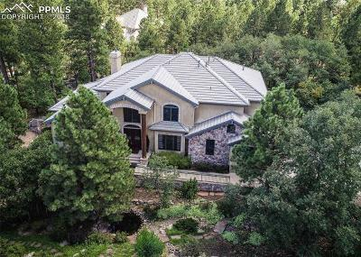 El Paso County Single Family Home For Sale: 571 Silver Oak Grove