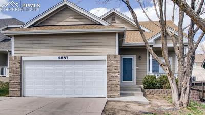 Colorado Springs Single Family Home For Sale: 4887 Saddle Ridge Drive