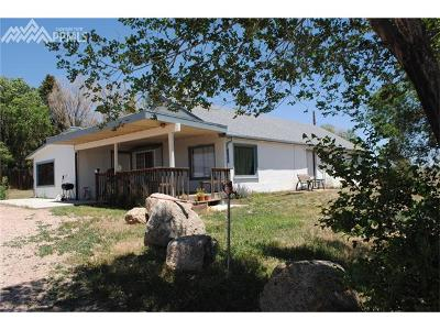 Colorado Springs Single Family Home For Sale: 6040 Cowpoke Road
