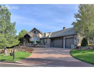 Colorado Springs Single Family Home For Sale: 4656 Stone Manor Heights