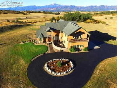 El Paso County Single Family Home For Sale: 2805 Meadow Run Circle