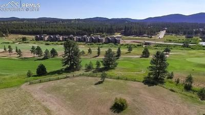 Woodland Park Residential Lots & Land For Sale: 1210 Woodland Valley Ranch Drive