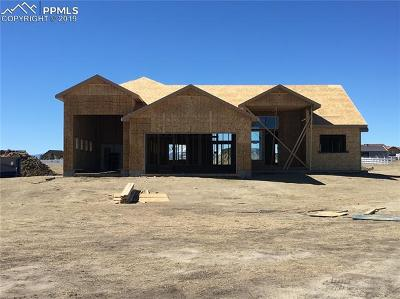 Elbert Single Family Home For Sale: 11990 Silver Concho Trail
