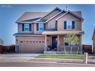 Colorado Springs Single Family Home For Sale: 7731 Barraport Drive