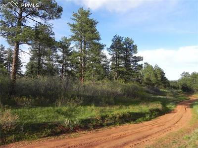 Residential Lots & Land For Sale: 8160 Bannock Drive