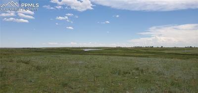 Peyton Residential Lots & Land For Sale: 8154 Buckskin Ranch View