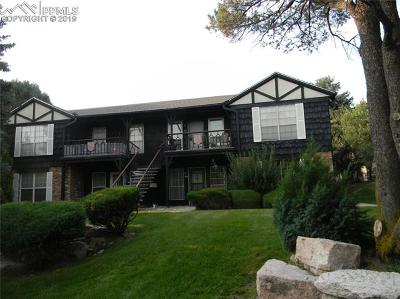 Colorado Springs Residential Income For Sale: 2902 Airport Road #113