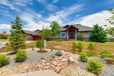 Colorado Springs Single Family Home For Sale: 13505 Random Ridge View