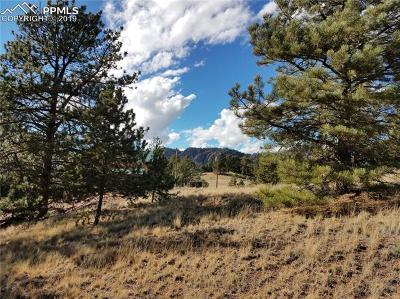 Cripple Creek Residential Lots & Land For Sale: 578 Crystal Drive