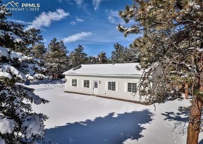 Single Family Home For Sale: 14175 Neva Lane