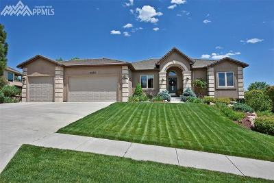 El Paso County Single Family Home For Sale: 4255 Saddle Rock Road